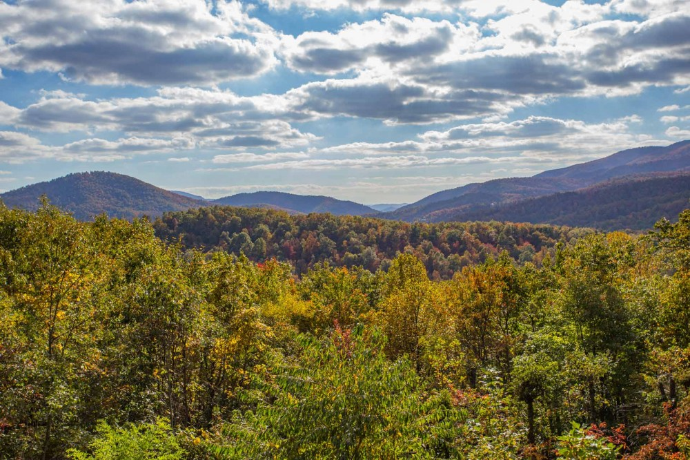 Black Mountain vacation rental with Cantbeattheseviews