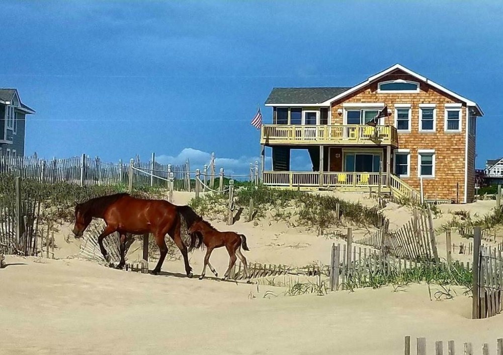 Corolla vacation rental with Dolphin Watch
