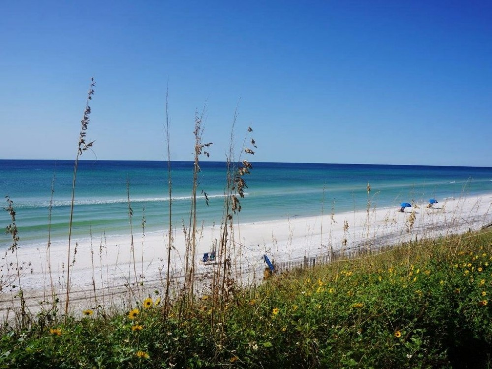 SANTA ROSA BEACH vacation rental with PET FRIENDLY FIVE STAR LUXURY FREE WIFI