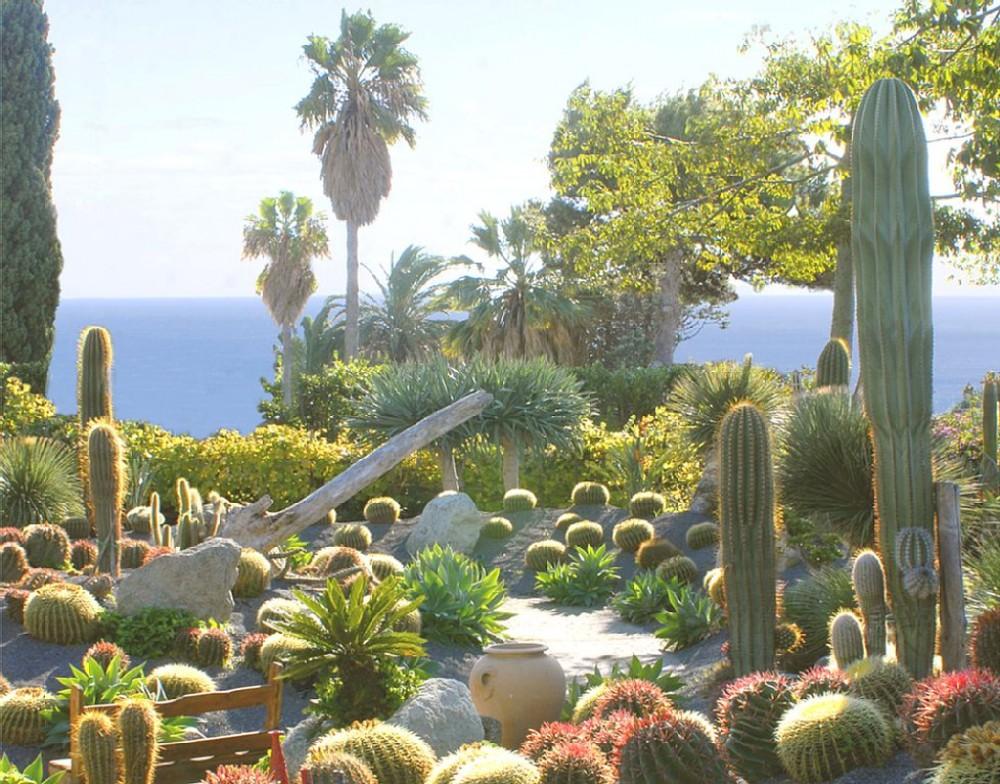Airbnb Alternative Property in ischia island