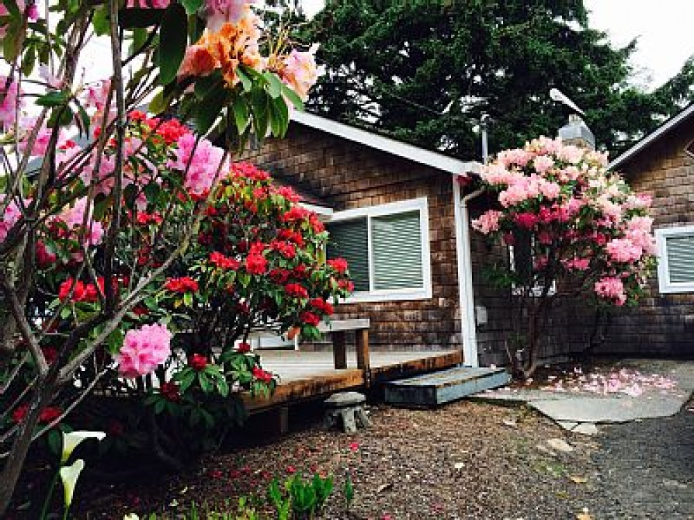 Airbnb Alternative Property in lincoln city