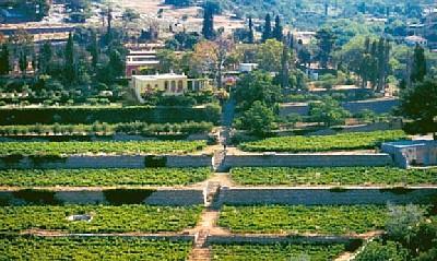 Evia vacation home