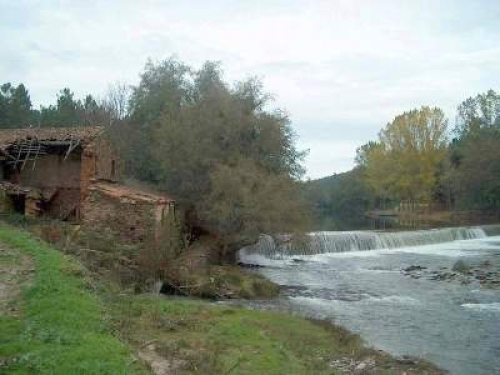 Cottage and apartment for rent in the green heart of Portugal