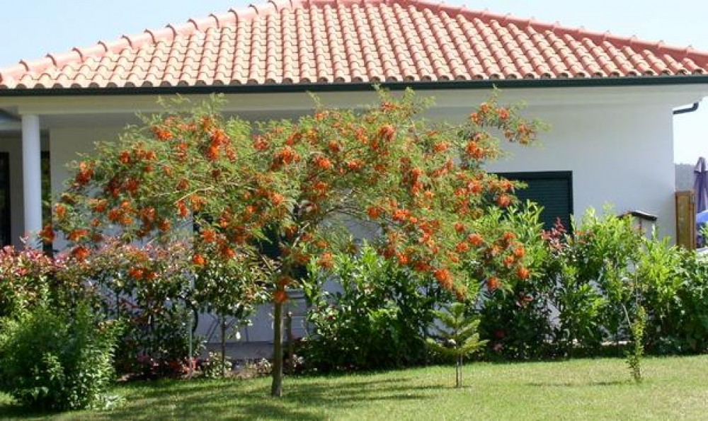 North Portugal vacation House rental