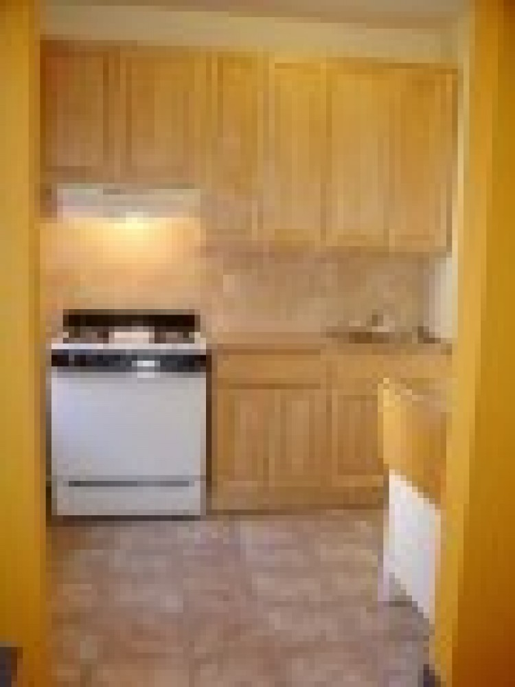 Airbnb Alternative brooklyn New York Rentals