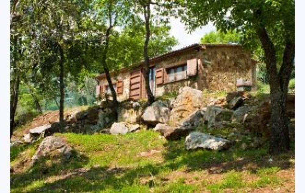 THE COACH-HOUSE
