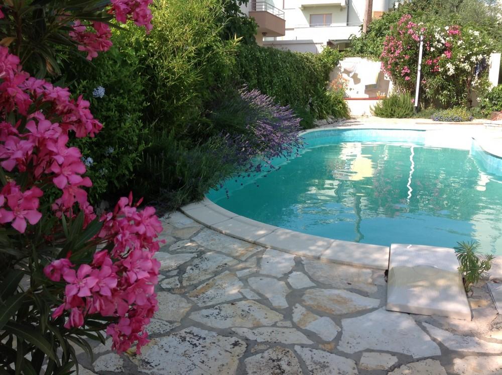 pool surrounded by big garden Airbnb Alternative Zadar Dalmatia Rentals