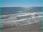 Vacation Home Property galveston