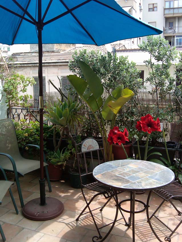 Home Rental Photos Palermo