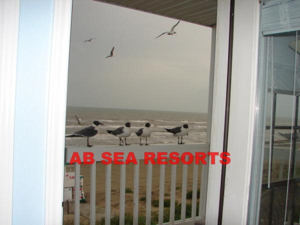 2 Bed Short Term Rental Apartment galveston