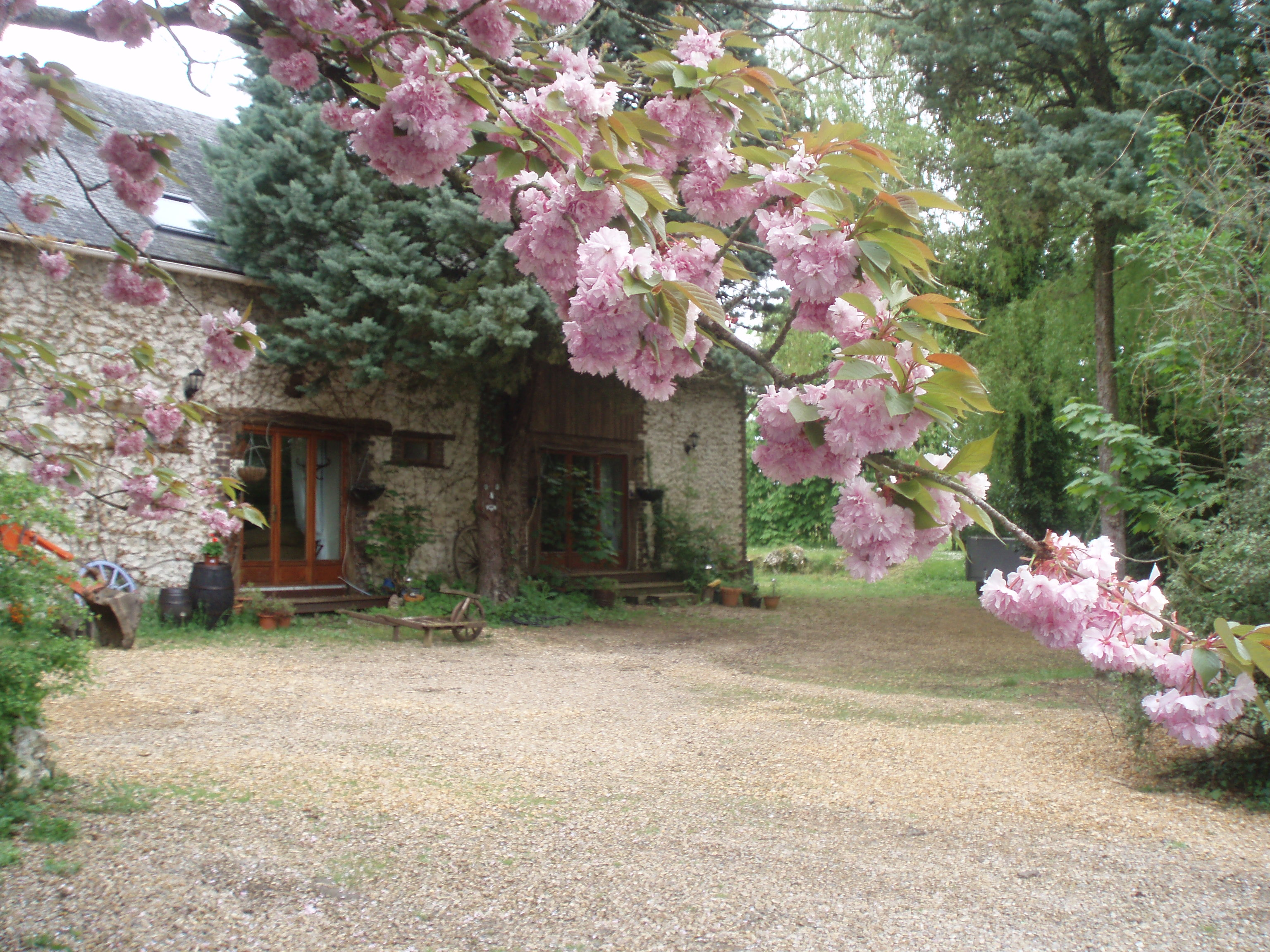 Two Spacious, Fully Renovated And Well Equipped Gites - Saumur Holiday Rentals
