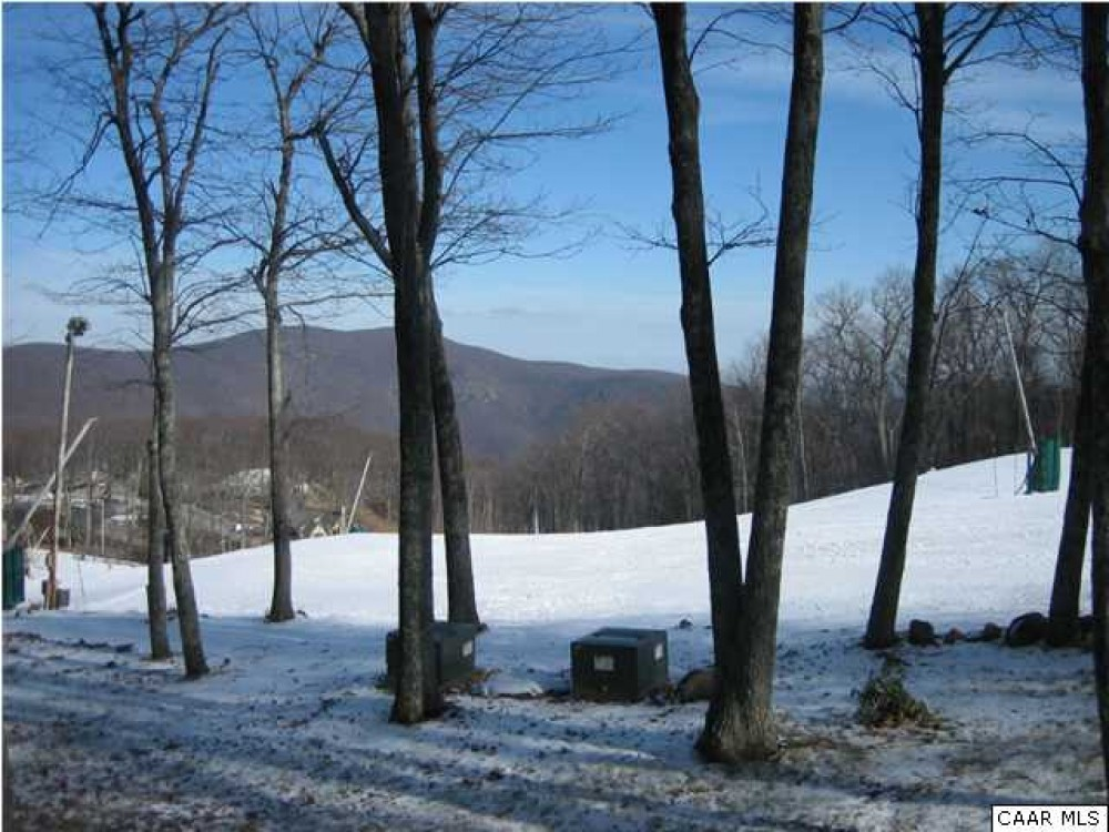 Vacation Home Property wintergreen