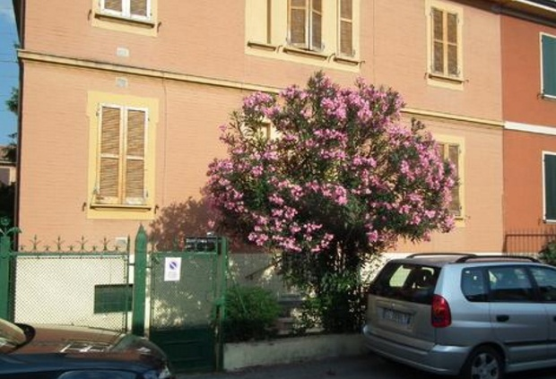 Apartments In Bologna Emilia Romagna