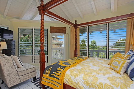 Aloha Room Queen Size Canopy Bed