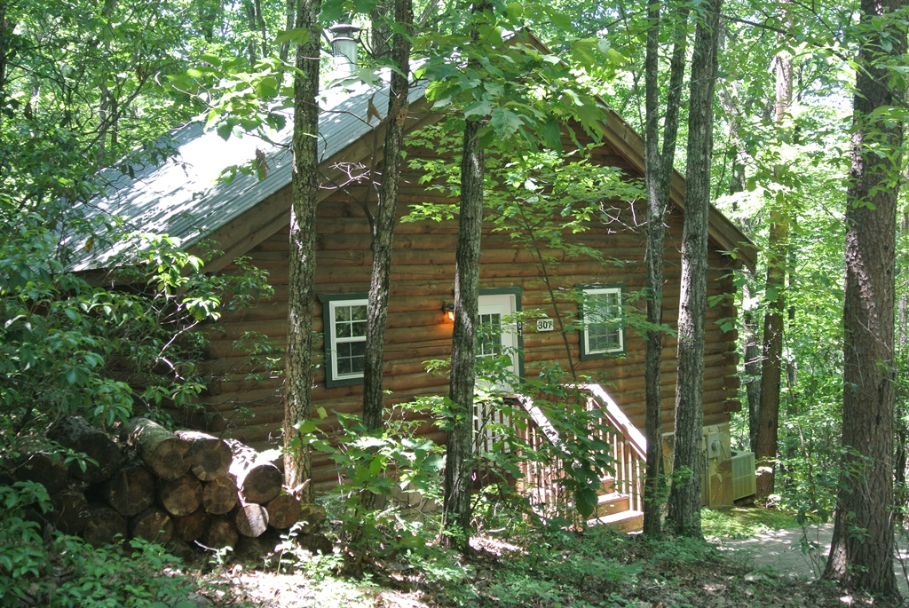 1 Bed Short Term Rental Cabin helen