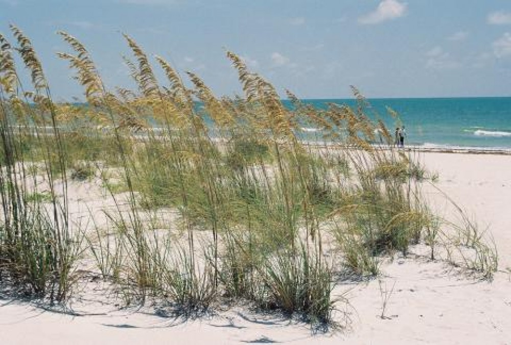 st pete beach vacation rental with Gulf of Mexico