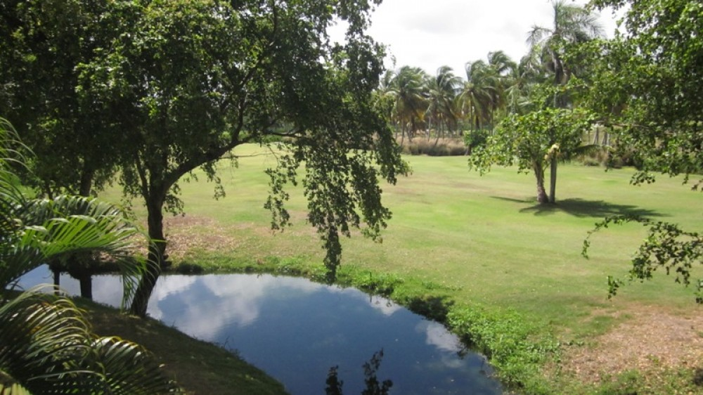 Punta Cana vacation rental with