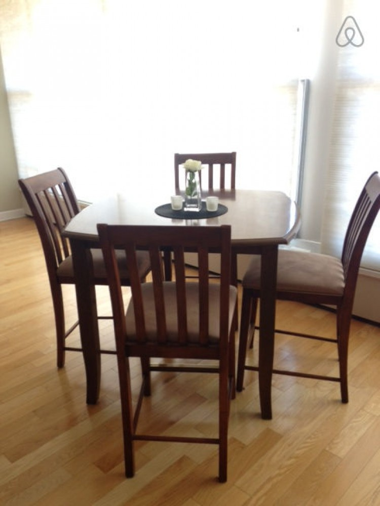chicago vacation rental with